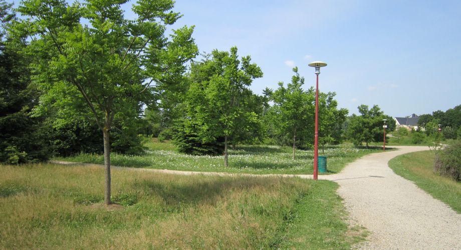 La gestion diff renci e au service des espaces verts for Service des espaces vert
